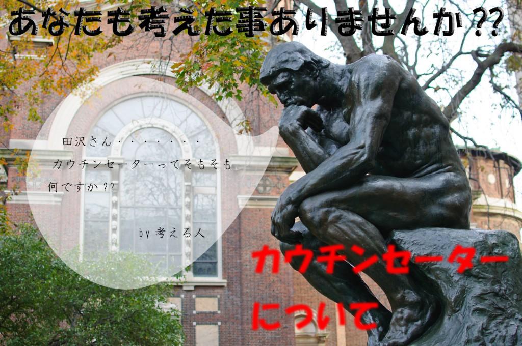 Le_Penseur_at_Columbia_University_(6435262909)