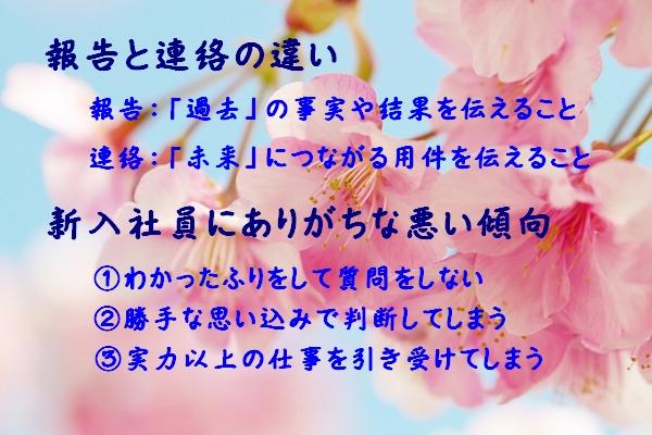 ブログ0401
