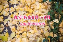 ニット編地・ニット糸・ニット製品、ニットに関する人気ブログをご紹介!8月~9月BEST5です。