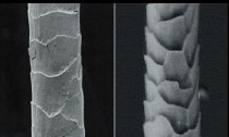 ニット素材のウールはなぜ縮むのか、そのメカニズムを簡潔にまとめました!